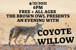 An Evening with Coyote Willow
