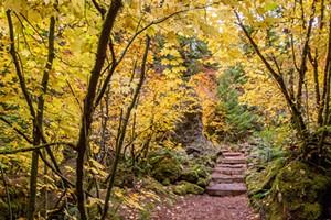 Bend Photo Tours - Fall Foliage Photo Workshop