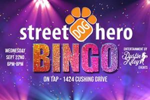BINGO for Street Dog Hero