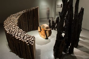 Exclusive Members' Exhibition Preview: Rethinking Fire