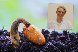 Know Mystery - Microbes in Seeds