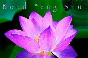 """""""Year of the Dog"""" Feng Shui Energy Worksop"""
