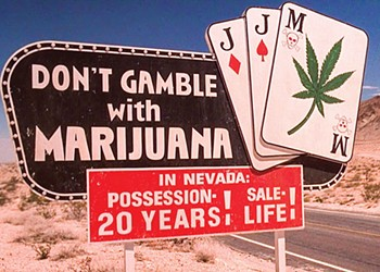 Fear and Loathing of the Marijuana Business is Unjustified