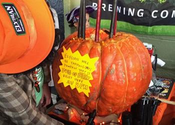 The Great Pumpkin Beer Roadshow