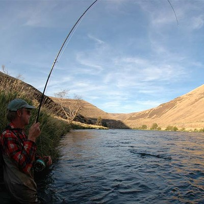 In Search of a Cooler River: Deschutes River Alliance Files Suit Against PGE