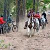 Trail Lovers Unite