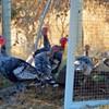 Farm-to-Table Thanksgiving