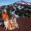 Training Truffle Hunting Dogs