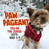2019 Paw Pageant — Vote!