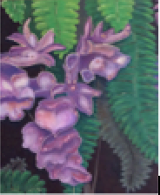 """Ferns and Orchids, Madeira"" mixed media painting - Uploaded by KKR"