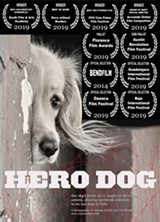 Uploaded by Street Dog Hero