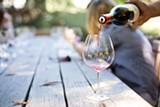 wine-1952051_1920.jpg