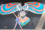Secrets of Sequencing Yoga Workshop - Uploaded by Free Spirit Yoga + Fitness + Play