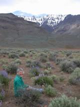 Carrie Gordon, PhD - Uploaded by laurelw