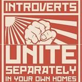introverts_jpg-magnum.jpg
