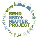 bsnp_logo_2_jpg-magnum.jpg
