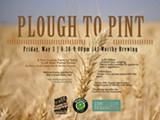 plough_to_pint_e.jpg