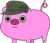 America Porks China