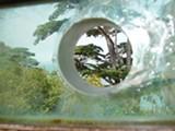 photos-0452-08.jpg