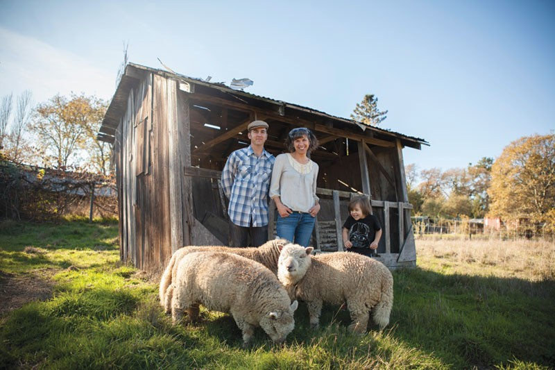 CIDER LEAN Scott Heath and Ellen Cavalli in front of the namesake tilted shed, while son Benny gets silly with the sheep. - SARA SANGER