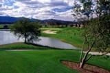 4e602fe1_golf_photo_stone_tree_1.jpg