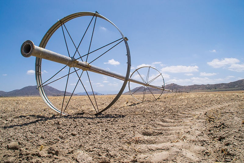 DRY AS DUST California's ongoing drought could cost the state's agriculture industry $1.7 billion.