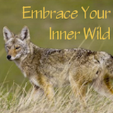 e97c947a_embrace_your_inner_wild.png