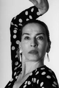 flamenco-9934.jpg