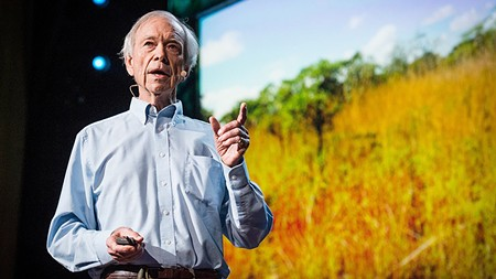 HERD MENTALITY Allan Savory's ideas on reversing desertification have polarized some in the scientific community.