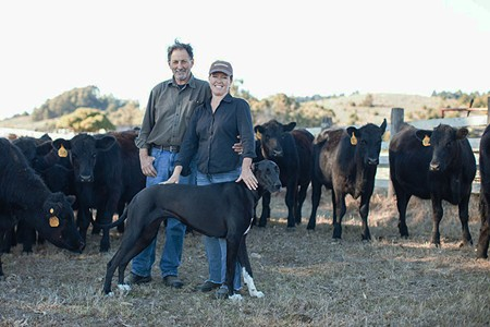 HOME ON THE RANGE Bill Niman helped his wife, Nicolette Hahn Niman, see cattle as part of a healthy ecosystem. - MICHAEL WOOLSEY
