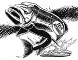 IT'S ALIVE: The makers of the Frankenfish claim that salmon farmed from genetically-modified eggs 'are exactly the same as any other North Atlantic salmon.'