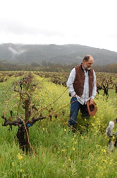 JUST RAIN: Glen Ellen dry-farmer Will Bucklin, pictured among vines that have lasted since 1851 with no irrigation at all.