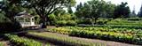 285577ee_garden_gazebo.jpg