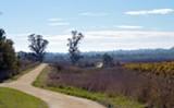 528c676a_laguna_trail.jpg