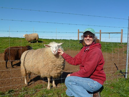 Marcia Barinaga says caring for sheep is what she loves most about being a cheesemaker. - STETT HOLBROOK