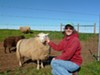 Marcia Barinaga says caring for sheep is what she loves most about being a cheesemaker.