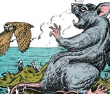 Mice Capades