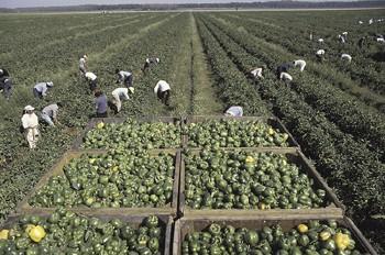 workers-0512.jpg