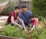 067c016d_naturemill_gardenfamily.jpg