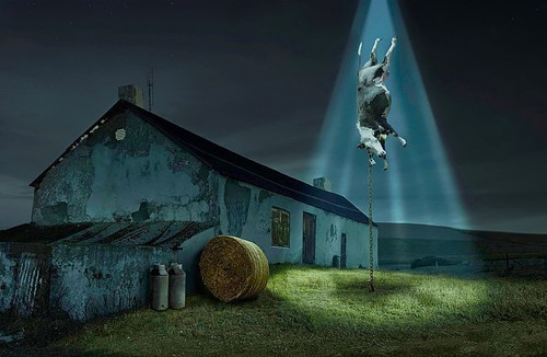 ufo_abducting_a_cow_by_johannes01.jpeg