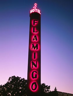 flamingohotel.jpg