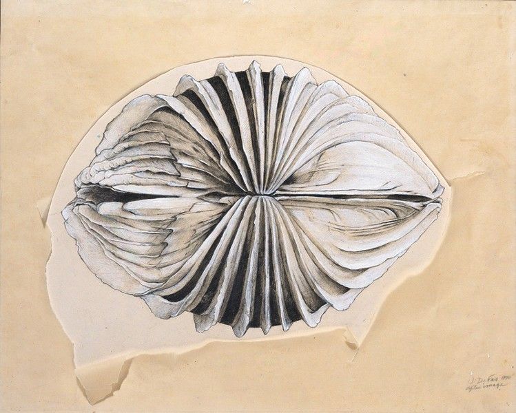 OUT OF HER SHELL Jay DeFeo's 'After Image' (1970) marked her return to artmaking after the arduous labor of 'The Rose.'