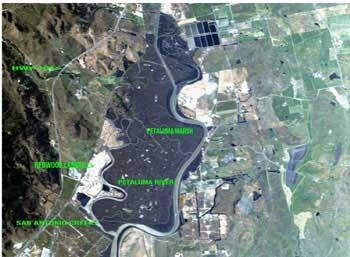 landfill-0448.jpg