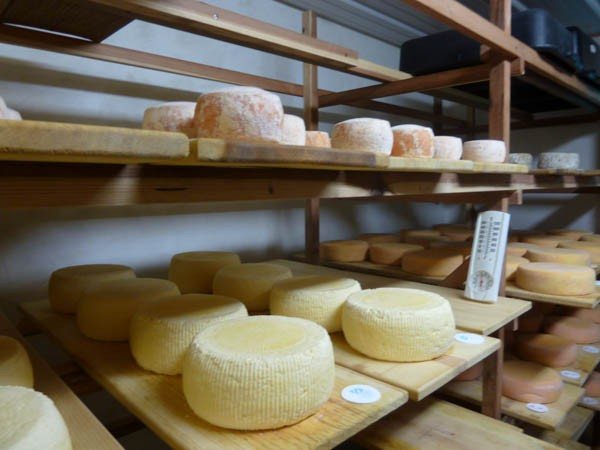 The cheese aging room at Weirauch Farm and Creamery was once a portable classroom. - STETT HOLBROOK