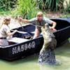 'The Crocodile Hunter'