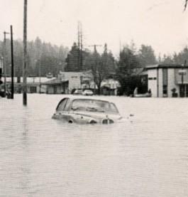 flood.connie.text.jpg