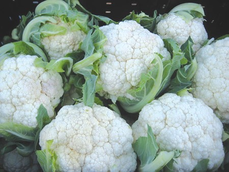 IMPERFECTLY GOOD This cauliflower was headed to a dumpster because of wider-than-desired gaps between florets. - PHOTO COURTESY IMPERFECT FOODS