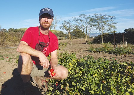 DON'T ADD WATER Kevin McEnnis planted dry-farmed tomatoes and way to tread lightly on the earth and distinguish himself in a crowded marketplace. The flavor was a bonus.