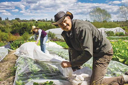 FARMING CARBON In addition to growing a diverse crop of vegetables, Paul and Elizabeth Kaiser's Singing Frogs Farm in Sebastopol helps pull carbon out of the atmosphere.