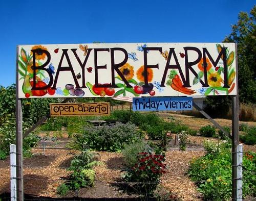 2010_-_bayer_farm_jpg.jpg